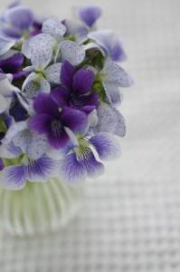 lavendar-green